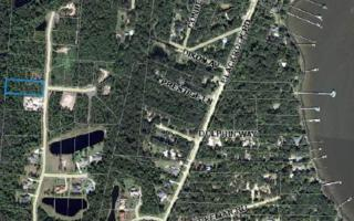 LOT 16  Southern Lily Drive  , Yulee, FL 32097 (MLS #64173) :: Prudential Chaplin Williams Realty