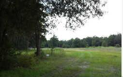 48156  Tracer Trail  , Hilliard, FL 32046 (MLS #63876) :: Prudential Chaplin Williams Realty