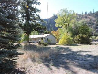 NNA  Entiat River Rd  , Entiat, WA 98822 (MLS #705766) :: Nick McLean Real Estate Group