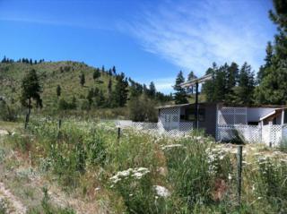 500  Washington Creek Rd  , Chelan, WA 98816 (MLS #706225) :: Nick McLean Real Estate Group