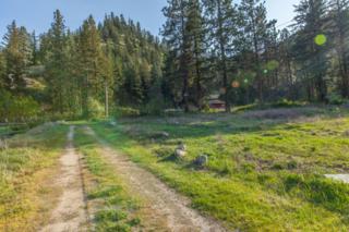 112  Sunshine Lane  , Entiat, WA 98822 (MLS #707029) :: Nick McLean Real Estate Group