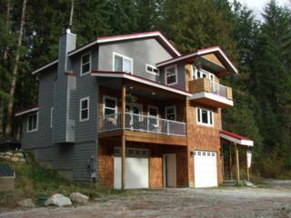 17590 N Shore Dr  , Leavenworth, WA 98826 (MLS #707051) :: Nick McLean Real Estate Group