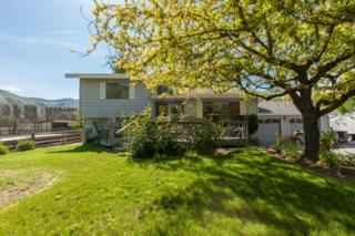 3756  Iroquois Ln  , Wenatchee, WA 98801 (MLS #707386) :: Nick McLean Real Estate Group