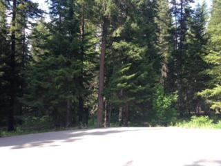 18620  Karl Rd  , Leavenworth, WA 98826 (MLS #707414) :: Nick McLean Real Estate Group