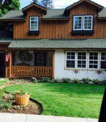705  Birch St  , Leavenworth, WA 98826 (MLS #707416) :: Nick McLean Real Estate Group