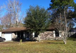 1685  Mary Beth Dr  , Middleburg, FL 32068 (MLS #699228) :: Exit Real Estate Gallery