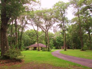 1063  Arthur Moore Dr  , Green Cove Spr, FL 32043 (MLS #736347) :: Exit Real Estate Gallery
