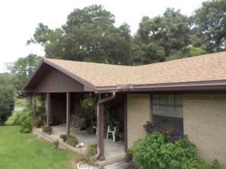 780  Lake Asbury Dr  , Green Cove Spr, FL 32043 (MLS #736523) :: Exit Real Estate Gallery