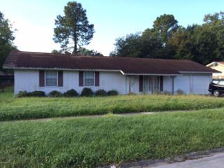 6156  Woodette Way  , Jacksonville, FL 32277 (MLS #739718) :: EXIT Real Estate Gallery