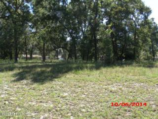 00  Wesley Rd  , Green Cove Spr, FL 32043 (MLS #741948) :: EXIT Real Estate Gallery