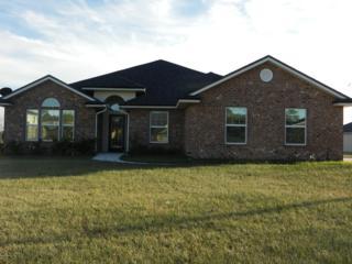9300  Zepher Lily Ln  , Jacksonville, FL 32219 (MLS #748190) :: EXIT Real Estate Gallery