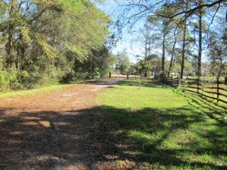3072  Henley Rd  , Middleburg, FL 32068 (MLS #751760) :: EXIT Real Estate Gallery