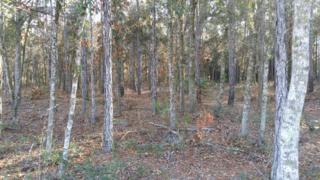 LOT 66  Deacon Dr  , Bryceville, FL 32009 (MLS #751776) :: EXIT Real Estate Gallery