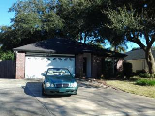 1061  Nesting Swallow Dr  , Jacksonville, FL 32225 (MLS #754351) :: Berkshire Hathaway Home Services Chaplin Williams Realty
