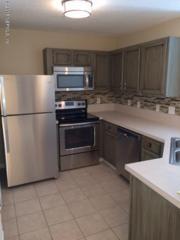 13727  Richmond Park N 105, Jacksonville, FL 32224 (MLS #756798) :: EXIT Real Estate Gallery