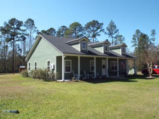 2949  Gobbler Rd  , Middleburg, FL 32068 (MLS #758074) :: EXIT Real Estate Gallery