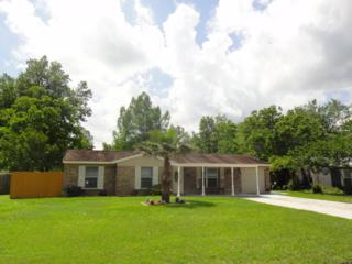 201  Evergreen Ln  , Middleburg, FL 32068 (MLS #767972) :: EXIT Real Estate Gallery