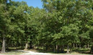 1790  Poa Boy Farms  , St Augustine, FL 32092 (MLS #638549) :: Exit Real Estate Gallery