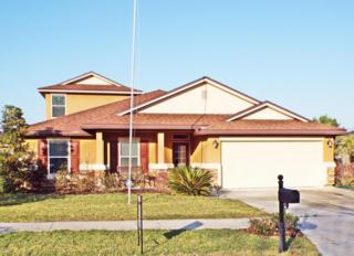 1111  Pine Island Ct  , Middleburg, FL 32068 (MLS #709996) :: Exit Real Estate Gallery