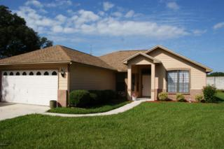 1872  Twin Peak Ct  , Middleburg, FL 32068 (MLS #743035) :: EXIT Real Estate Gallery