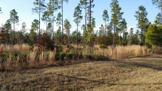 LOT 107  Bullock Bluff Rd  , Bryceville, FL 32009 (MLS #748129) :: EXIT Real Estate Gallery