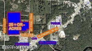 4408  Pine Tree Ln  , Middleburg, FL 32068 (MLS #688313) :: Exit Real Estate Gallery