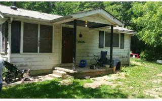 1068  Humphrey Mill  , Mineral Bluff, GA 30559 (MLS #248270) :: ERA Sunrise Realty
