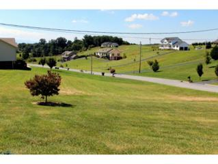 151  Mulberry Bend  , Jonesborough, TN 37659 (MLS #338970) :: Jim Griffin Team