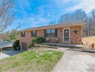 420  Poplar Street  , Mount Carmel, TN 37645 (MLS #346077) :: Jim Griffin Team