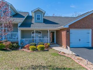 48  Sagewood Ct.  16, Jonesborough, TN 37659 (MLS #346194) :: Jim Griffin Team
