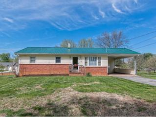 85  Brumley Dr. N , Greeneville, TN 37743 (MLS #346910) :: Jim Griffin Team