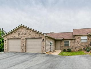104  Haley Circle  104, Gray, TN 37615 (MLS #347040) :: Jim Griffin Team