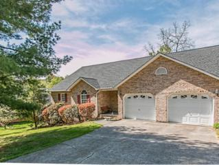 441  Oak Forest Place  , Kingsport, TN 37664 (MLS #347056) :: Jim Griffin Team