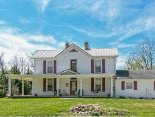 612  Mckee Street E , Greeneville, TN 37743 (MLS #347345) :: Jim Griffin Team
