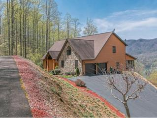 124  Diamond Point Drive  , Butler, TN 37640 (MLS #347366) :: Jim Griffin Team