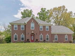 471  Chesterfield Drive  , Kingsport, TN 37663 (MLS #347581) :: Jim Griffin Team