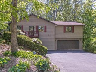 1709  Colonial Ridge Road  , Johnson City, TN 37604 (MLS #348103) :: Jim Griffin Team