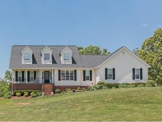 115  J A Ramsey Lane  , Jonesborough, TN 37659 (MLS #348437) :: Jim Griffin Team