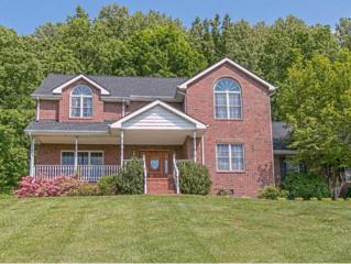 710  Shadden Road  , Gray, TN 37615 (MLS #348506) :: Jim Griffin Team