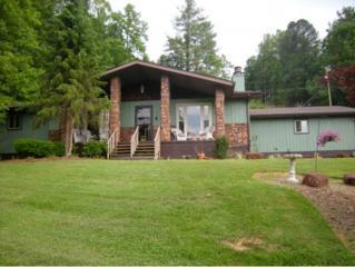 415  Fishery Loop Road  , Erwin, TN 37650 (MLS #349057) :: Jim Griffin Team