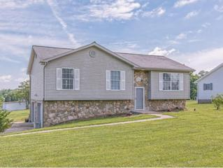 60  Cimarron Trail  , Afton, TN 37616 (MLS #349165) :: Jim Griffin Team