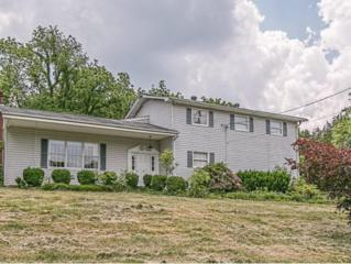 330  Proffitt Lane  , Kingsport, TN 37663 (MLS #349226) :: Jim Griffin Team
