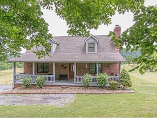 360  Mockingbird Lane  , Kingsport, TN 37663 (MLS #349461) :: Jim Griffin Team