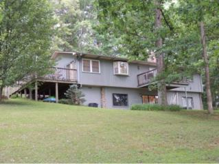 8385  E. Andrew Johnson Hwy.  , Chuckey, TN 37641 (MLS #349481) :: Jim Griffin Team