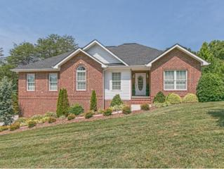 237  Carrie Circle  , Mt. Carmel, TN 37645 (MLS #349586) :: Jim Griffin Team
