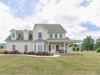 193  Old Stage Dr.  , Bristol, TN 37620 (MLS #349888) :: Jim Griffin Team