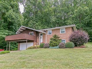 277  Deck Lane  , Kinsport, TN 37663 (MLS #350390) :: Jim Griffin Team