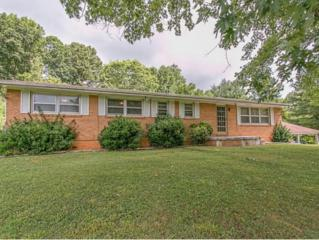1181  Chinquapin Grove Rd.  , Bluff City, TN 37618 (MLS #350723) :: Jim Griffin Team