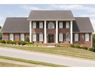 1  Creston Court  , Johnson City, TN 37604 (MLS #351488) :: Jim Griffin Team