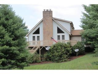 282  Sycamore Drive  , Jonesborough, TN 37659 (MLS #351493) :: Jim Griffin Team